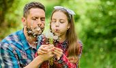 Family Summer Farm. Daughter And Father Love Dandelion Flower. Little Girl And Happy Man Dad. Earth  poster