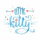 Little Kitty Quote. Blue Color Baby Shower Hand Drawn Calligraphy Style Lettering Phrase. poster