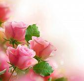 Diseño de arte de rosas