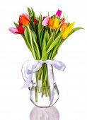 Spring tulips in vase, isolated on white background