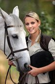 stock photo of white horse  - Horse and rider - JPG