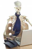 Skeleton At Work 6