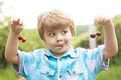 Funny Face. Baby Child With Cherries In Two Hands. Fun Math. Equations. Summer Holidays. Happy Time. poster