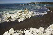 White Rocks On The Beach
