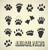 image of opossum  - Collection of vector paw prints of both domestic and wild animals - JPG