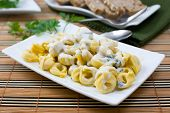 pic of italian food  - fresh italian pasta tortellini with blue cheese sauce on white platter - JPG