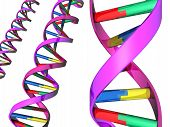 stock photo of double helix  - An Illustration of colorful DNA double helixes - JPG