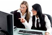 Professional Women Checking Office Profile In Own Pc