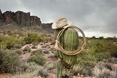 A moody image of a lasso and cowboy hat hanging on saguaro cactus in the Superstition Mountains in A