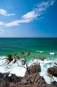 Noosa Beach - Queendsland - Australia