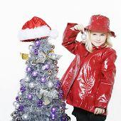 Preparing Christmas Tree