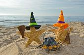 pair of Halloween starfish