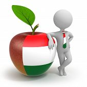 Apple With Hungary Flag And Businessman