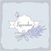 Lavender, herb, flower,