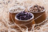 stock photo of pinto bean  - Close up photo of a beans in clay cup  - JPG