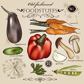 Set Of Vector Old-fashioned Vegetables And Foodstuffs For Design