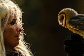 Blond falconry girl gaze to barn owl