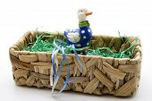 Duck with Easter grass