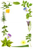 picture of valium  - Herb leaf selection with lavender - JPG
