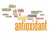 Antioxidant Word Cloud