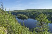 stock photo of murmansk  - Landscape with an island. Kutsayoki river Murmansk region Russia.