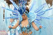 beautiful and sexy woman samba dancer during the Carnival