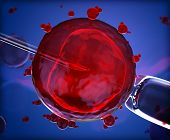 picture of insemination  - 3d version of artificial insemination  - JPG
