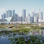 pic of hsbc  - Singapore the  - JPG