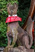 Kyoto, Japan - November 19 2013: Kitsune Fox Statues Hold A Symbolic Item In Their Mouths Or Beneath
