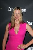 LOS ANGELES - AUG 23:  Mira Sorvino at the 2014 Entertainment Weekly Pre-Emmy Party at Fig & Olive o
