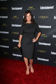LOS ANGELES - AUG 23:  Marcia Gay Harden at the 2014 Entertainment Weekly Pre-Emmy Party at Fig & Ol