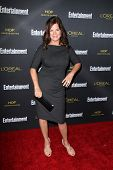LOS ANGELES - AUG 23:  Marcia Gay Harden at the 2014 Entertainment Weekly Pre-Emmy Party at Fig & Olive on August 23, 2014 in West Hollywood, CA