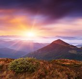 Delicate state of nature in the mountains. Beautiful landscape at dawn. Carpathian mountains, Ukrain