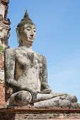 Old Buddha Meditation