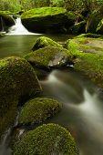 Jake's Creek Falls