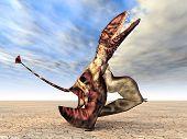 Pterosaur Dimorphodon