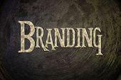 Branding Concept