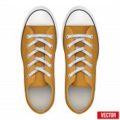 pair of orange simple sneakers. Realistic Vector Illustration.