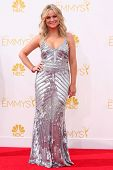 LOS ANGELES - AUG 25:  Amy Poehler at the 2014 Primetime Emmy Awards - Arrivals at Nokia Theater at