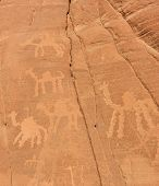 Ancient Rock Drawings In The Sinai Desert