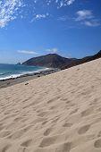 Malibu Sand Dune