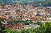 Panoramic Sight Of Town Lviv In Ukraine