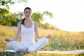 Young Beautiful Woman Practices Yoga on the Sunny Meadow. Active Lifestyle