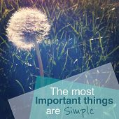 Inspirational Typographic Quote - The most important things are simple