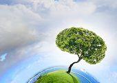 Conceptual image of green tree shaped like brain