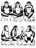 stock photo of all seeing eye  - Black and white illustration of three monkeys acting out famous expression - JPG