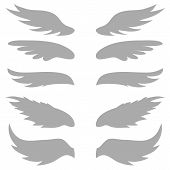 Set of five Wings
