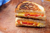 stock photo of tomato sandwich  - classic grilled cheese and heirloom tomato sandwiches - JPG