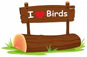 Illustration of  i love birds sign
