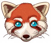 Illustration of a close up red panda head